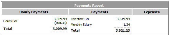 Fig 6 - Payments Report Section