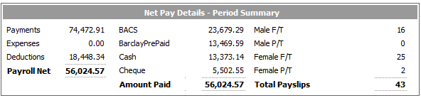 Fig 3 - Net Pay Details Section